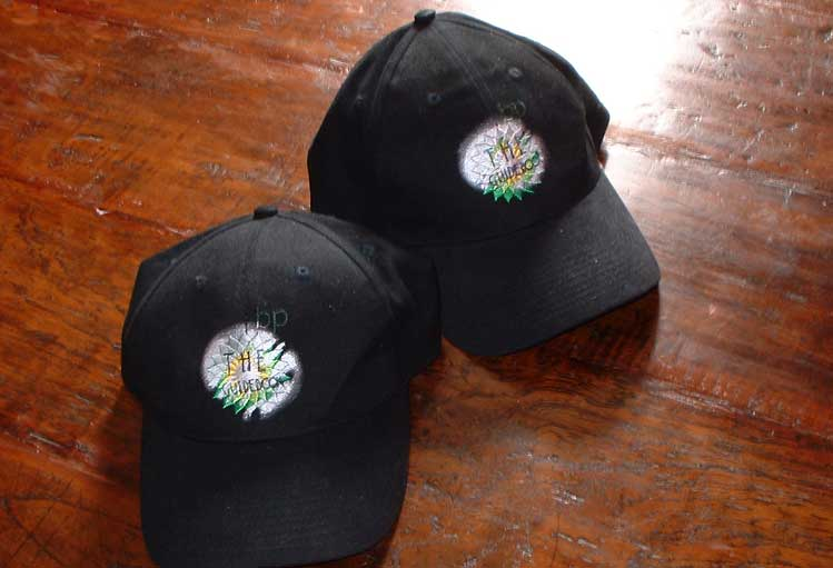 baseball caps with Guidebook logo